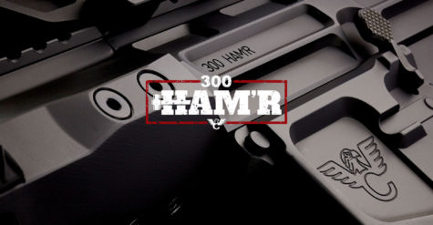 Wilson Combat Unleashes Another HAM'R - 300 HAM'R