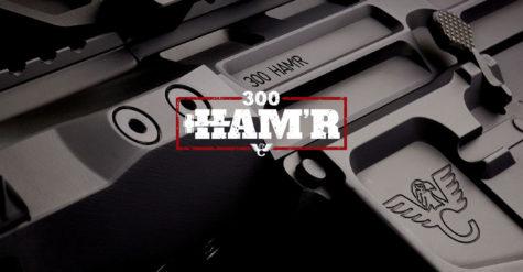Wilson Combat Unleashes Another HAM'R - 300 HAM'R